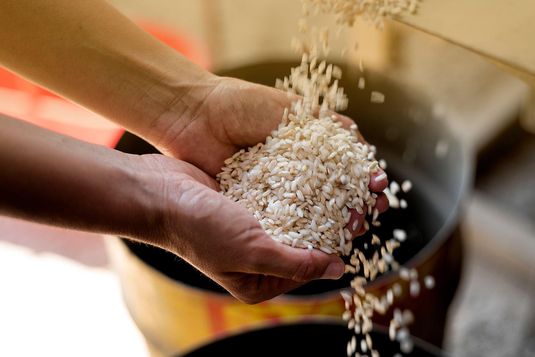 Lavorazione del riso